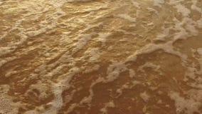 慢动作:在金黄海滩的发光的热带海波浪 影视素材