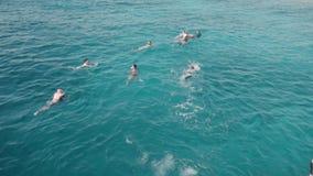 慢动作A小组游人潜航的游泳和在海洋沐浴在游艇附近 面具和废气管和 股票视频
