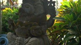 慢动作steadicam用青苔盖的射击了Ganesha神石雕象在一个热带庭院里 股票录像