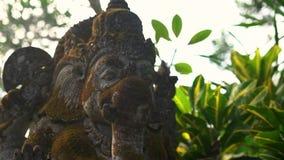 慢动作steadicam用青苔盖的射击了Ganesha神石雕象在一个热带庭院里 影视素材