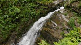 慢动作waterfalling在山森林里 股票录像