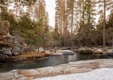 慢小河在秋天森林1里 图库摄影