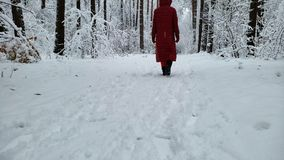 慢慢地走在积雪的森林里的人在冬天手段,后面看法附近 股票视频