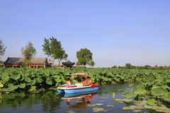 慢慢地驾驶在水中的游船,在公园 库存照片