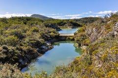 慢慢移动水坝,火地群岛国家公园,乌斯怀亚,阿根廷 免版税库存照片
