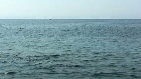 慢手扶的平底锅有汽船的Kona夏威夷海洋 股票录像