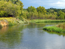 慢河在有树的草甸 免版税图库摄影