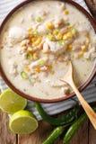 慢烹饪器材白色辣椒鸡用豆和玉米特写镜头 库存图片