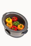 慢烹饪器材 免版税库存照片