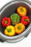 慢烹饪器材 免版税图库摄影