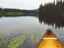 慢的桨 库存照片