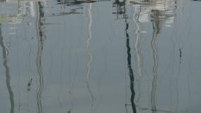 慢的行动 白色游艇在港口,反射在镇静水,蓝色早晨天空中 股票视频