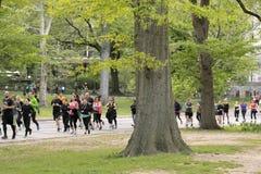慢跑者在中央公园,纽约 免版税库存照片
