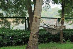 懒惰吊床被栓对两棵树 库存照片