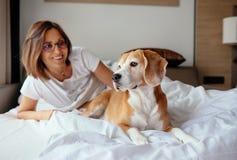 懒惰早晨在床上-妇女和她的小猎犬狗见面早晨 库存照片