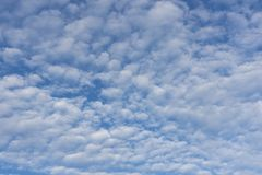 懦弱天空在挪威 库存照片