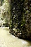 戈兰高地峡谷风景 库存照片