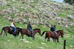 戈兰高地-以色列 库存照片