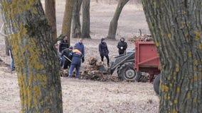 戈梅利,白俄罗斯- 2019年3月23日:上班 清洗公园区域由安置和共同服务 股票录像