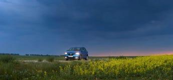 戈梅利,白俄罗斯- 2018年5月15日:里诺摇石蓝色汽车在领域停放了反对风雨如磐的天空 库存图片