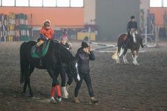 戈梅利,白俄罗斯- 2017年11月25日:马骑术马术运动 孩子学会马术 免版税图库摄影