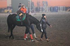 戈梅利,白俄罗斯- 2017年11月25日:马骑术马术运动 孩子学会马术 库存照片