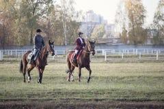 戈梅利,白俄罗斯- 2016年10月16日:两个女孩车手准备在竞争前的马 图库摄影