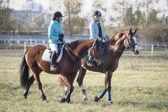 戈梅利,白俄罗斯- 2016年10月16日:两个女孩车手准备在竞争前的马 免版税库存照片