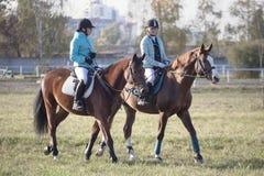 戈梅利,白俄罗斯- 2016年10月16日:两个女孩车手准备在竞争前的马 库存图片