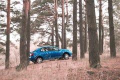 戈梅利,白俄罗斯- 2016年10月18日:在自然背景的蓝色汽车 免版税图库摄影