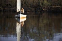 戈梅利,白俄罗斯- 2017年4月9日:有风帆的一条小船沿河在春天游泳 库存图片