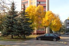 戈梅利,白俄罗斯- 10月03 2016年:在住宅高层建筑物的汽车停车处 免版税图库摄影