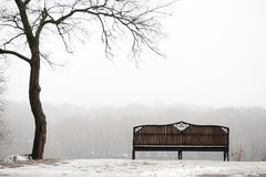 戈梅利 迟来的 一条偏僻的长凳在一个有雾的公园 库存图片