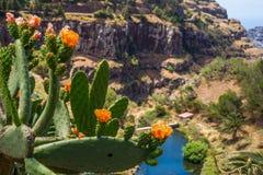 戈梅拉岛全景 图库摄影