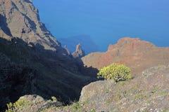 戈梅拉岛,西班牙:与大西洋的多山风景在背景中 在Arure村庄附近拍的照片 免版税库存照片