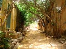 戈雷岛海岛街道-塞内加尔 库存图片