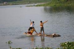 戏剧在水中 免版税库存图片