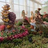 戏剧la的Bromeliad庭院在武里喃府泰国ploen 免版税库存图片