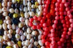 成串珠状五颜六色的项链 免版税库存图片