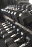 成为不饱和的哑铃重量机架在健身房的 库存照片