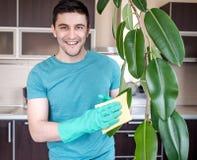 成人人清洗pipal在厨房里 免版税库存图片