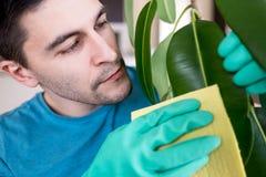 成人人清洗pipal在厨房里 免版税图库摄影
