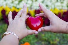 成人和孩子的手有红色心脏的,医疗保健,爱,捐献器官 图库摄影