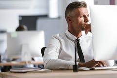成人商人30s佩带的白色衬衣和领带, sitt的图象 免版税库存图片