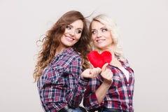 成人女儿和母亲有心脏的爱标志 库存图片