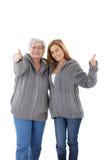 成人女儿愉快母亲微笑 免版税库存图片