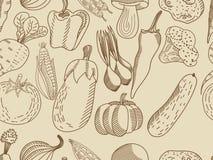 成人的菜无缝的传染媒介 库存照片