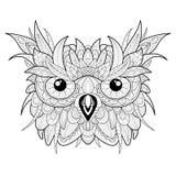 成人着色的手拉的逗人喜爱的猫头鹰画象 免版税库存图片