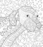 成人着色页在花卉背景的一条逗人喜爱的狗放松的 禅宗艺术样式例证 免版税图库摄影