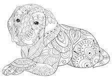 成人着色页放松的一条逗人喜爱的狗 禅宗艺术样式例证 免版税库存照片